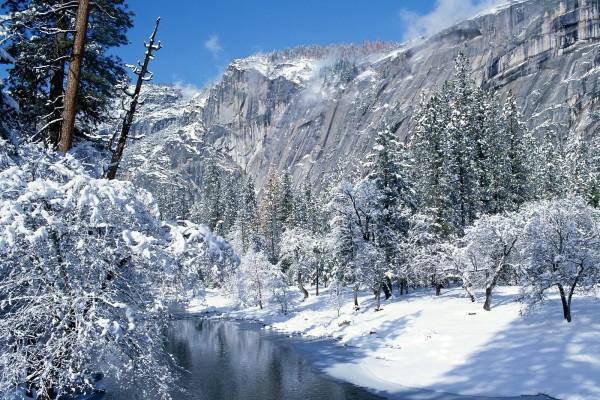 Nieve en los árboles y a orillas del río