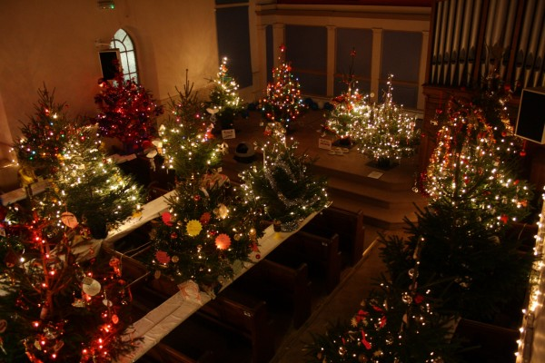 Varios árboles de Navidad iluminados