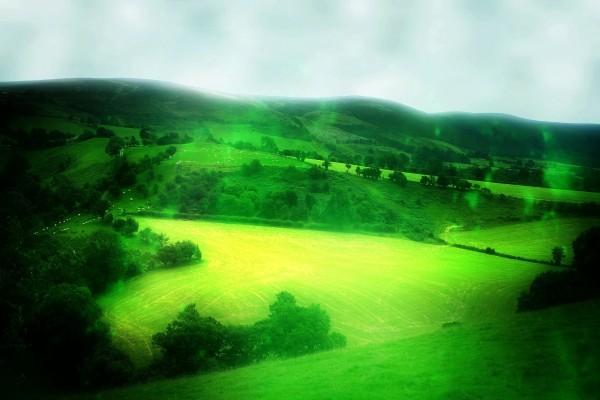 Pastos verdes