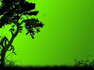 Naturaleza verde