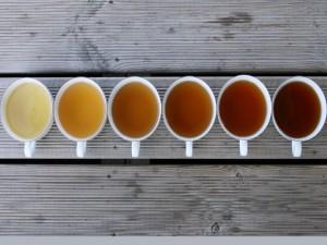 Tazas con varias clases de té