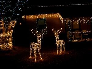 Renos de Navidad iluminados junto a una casa