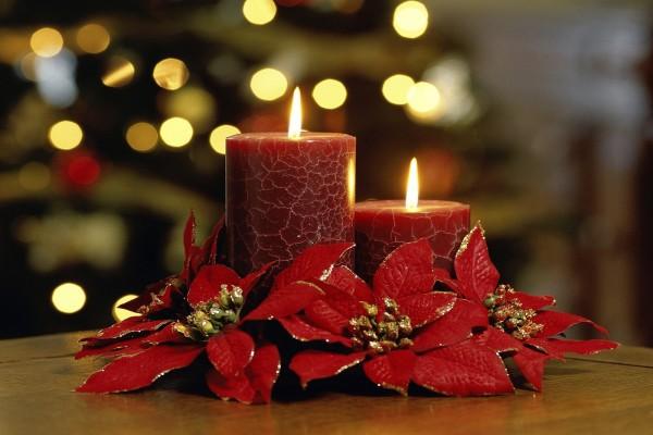 Velas y flores de pascua para decorar en Navidad