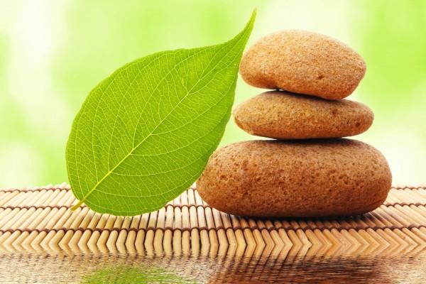 Hoja verde apoyada en una torre de piedras zen
