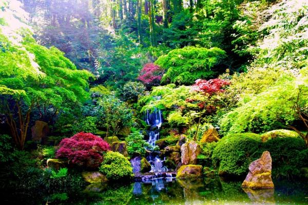 Cascada zen