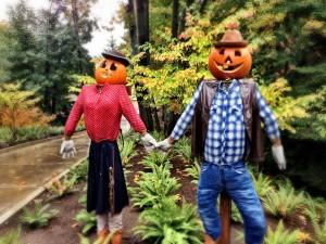 Postal: Pareja de espantapájaros en Halloween