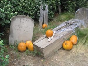 Postal: Tumbas y calabazas para Halloween
