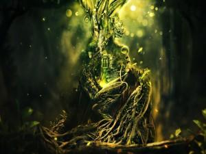 Postal: Ventana en el árbol mágico