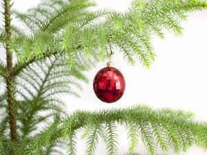 Postal: Una única bola en el abeto de Navidad