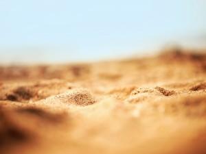 Arena dorada en una playa