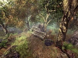 Bosque con setas, rocas y troncos apilados