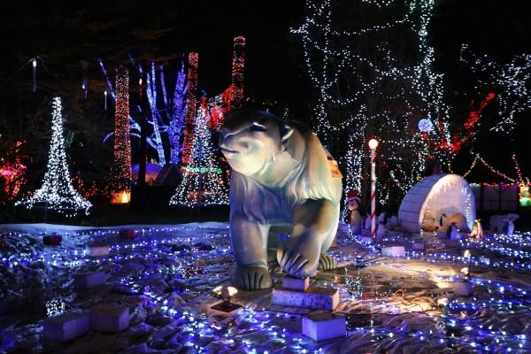 Decoración polar en Navidad