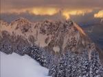 Un bello paisaje de nieve sobre árboles y montañas