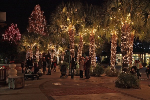 Palmeras iluminadas en Navidad