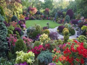 Maravilloso jardín con árboles, arbustos y flores de diversos colores