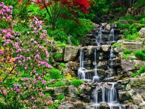 Postal: Cascadas de agua cristalina