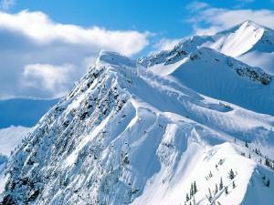 Postal: Cimas cubiertas de nieve