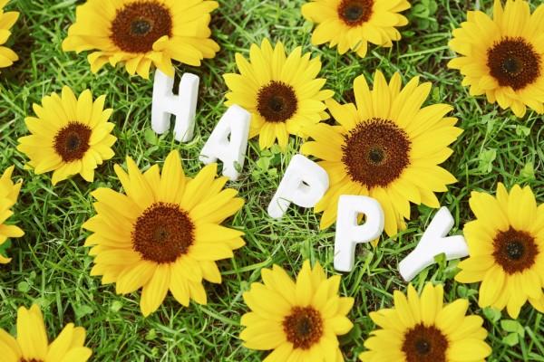 """""""Feliz"""" entre flores amarillas"""