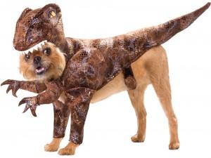 Perro disfrazado de dinosaurio