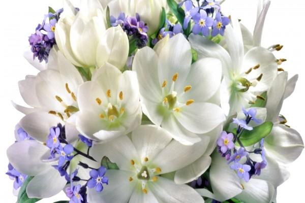 Delicado arreglo floral