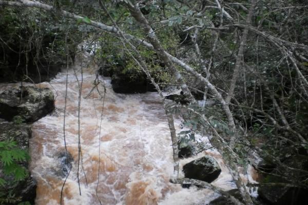 Corriente de agua de las Cataratas del Iguazú