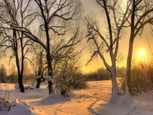 Puesta de sol en un lugar cubierto de nieve