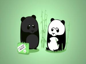 Un oso panda vuelve de la playa