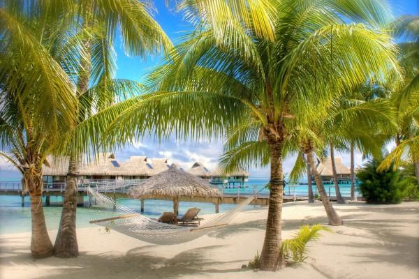 Hamaca y palmeras en un playa