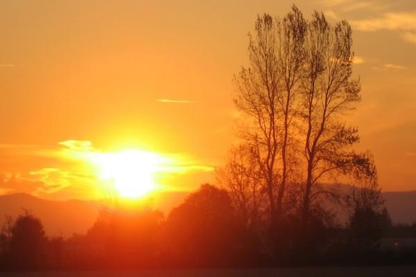 Contemplando el sol desde el campo