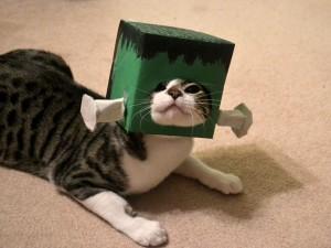 Postal: Un gato Frankenstein