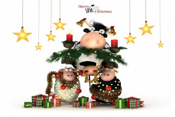 Ovejas adornando a una vaca por Navidad
