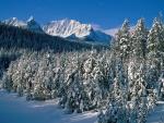 Un hermoso paisaje natural cubierto de nieve