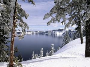 Postal: Nieve a orillas del lago