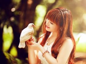 Postal: Joven admirando una paloma blanca