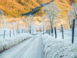 Carretera helada a finales del otoño
