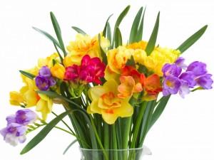 Postal: Colorido ramo de flores y hojas en un recipiente