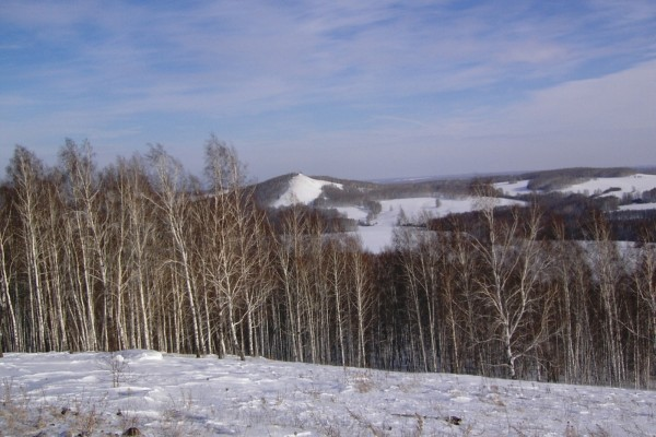 Tierra cubierta de nieve