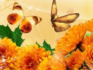 Mariposas y flores en otoño