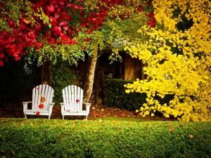 Postal: Sillones en un jardín junto a los árboles otoñales