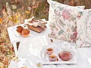 Postal: Picnic de otoño con un exquisito té
