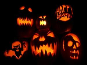 """Diseño de calabazas para la noche de """"Halloween"""""""