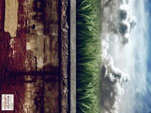 Postal: Muro, hierba y el cielo