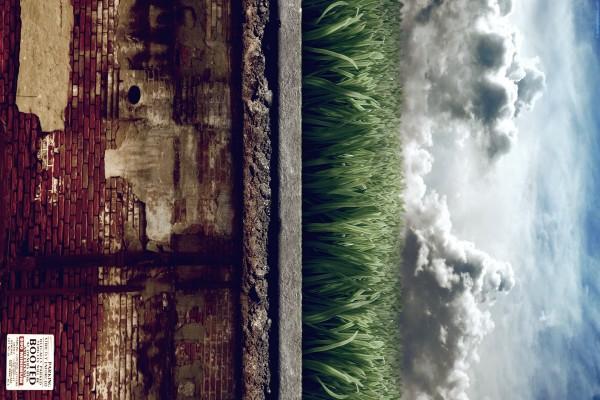 Muro, hierba y el cielo