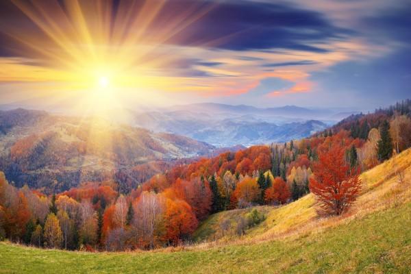 Brillante sol en otoño