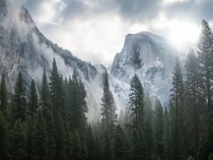 Postal: Niebla en las montañas de Yosemite