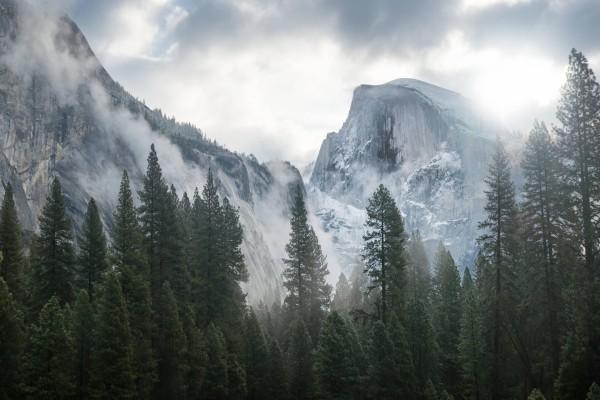 Niebla en las montañas de Yosemite