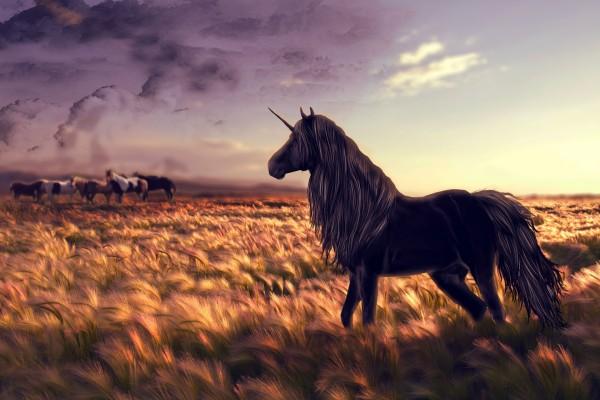 Un unicornio próximo a una manada de caballos