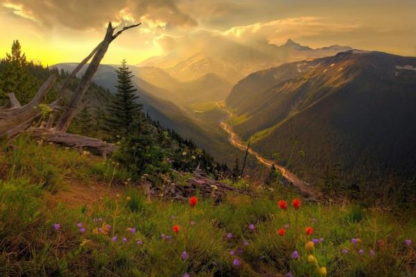 Preciosas vistas desde la montaña