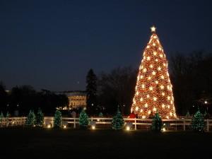 Árboles de Navidad en Estados Unidos