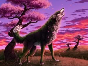 Postal: Un lobo aullando en un bello amanecer